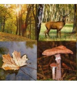 Serviette forêt d'automne