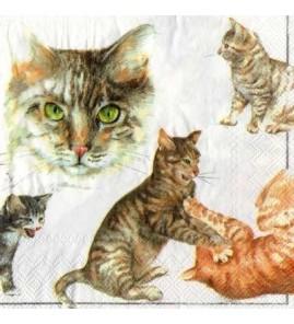Serviette chats  pastel