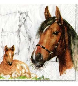 Serviette chevaux pastel