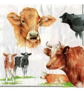 Serviette vaches pastel