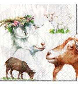 Serviette  chèvres  pastel