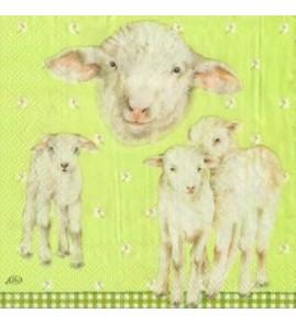 Serviette agneaux fond vert