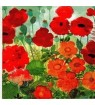 Serviette « poppy »