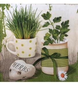 Serviette herbes mix