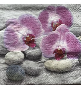 Serviette orchid on stones